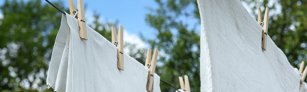 "The easiest way to dry towels and swimsuits is to throw them on a clothesline or over the back porch, but that also makes them ""screens"" for collecting pollens and molds"