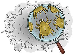 Cartoon image of dust mites
